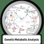 Genetic Testing and Genomic Testing for Metabolic optimization