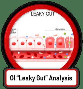 GI Leaky Gut Testing