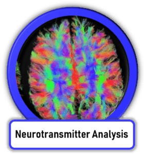 Neurotransmitter Testing and Treatment