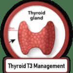thyroid treatment scottsdale arizona T3 T4 naturethroid armour thyroid