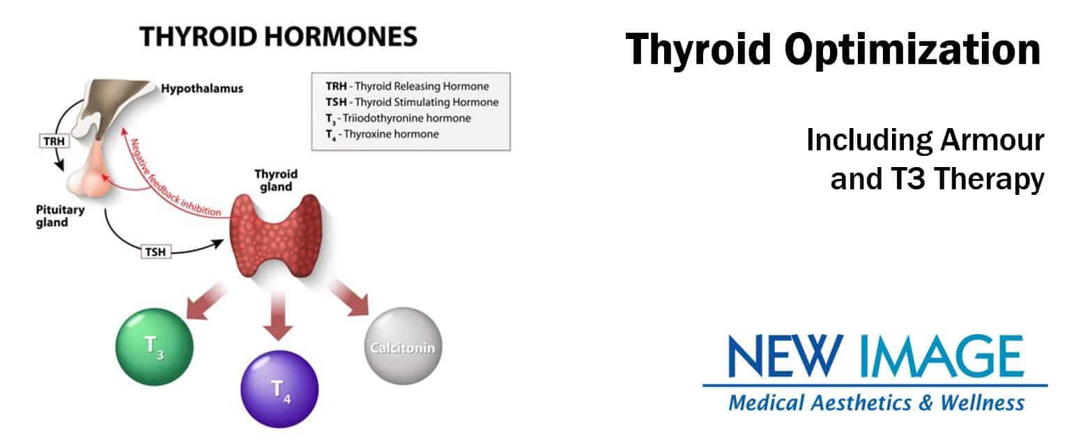 Armour Naturethroid Thyroid Treatment